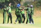 Challengers celebrate a wicket